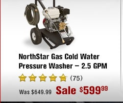 NorthStar Gas Cold Water Pressure Washer - 2.5 GPM, 3000 PSI