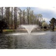Kasco Aerating Fountain — 3/4 HP, 120V, 100-Ft. Power Cord, Model# 3400VF100 The price is $1,292.40.