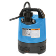 Tsurumi Submersible Water Pump — 3,810 GPH, 2/3 HP, 2in. Port, Model# LB-480-62 The price is $326.00.