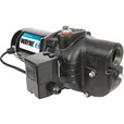 Wayne Heavy-Duty Shallow Well Jet Water Pump — 840 GPH, 3/4 HP, 1 1/4in. Port, Model# SWS75 The price is $229.99.