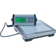 Adam Equipment Electronic Scale with Remote Display — 330-Lb. Capacity The price is $199.99.