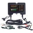 BatteryMINDer Battery Charger/Maintainer/Desulfater — 12V, 2 Amp, Model# 2012 The price is $79.99.