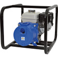 IPT Cast Iron Self-Priming Semi-Trash Water Pump — 2in. Ports, 9000 GPH, 3/8in. Solids Capacity, 160cc Honda Engine, Model# 2GS5QCB The price is $699.99.
