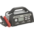 Strongway Smart Battery Charger — 12 Volt, 2/8/15 Amp The price is $54.99.