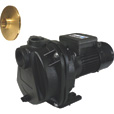 BurCam Cast Iron Sprinkler Pump — 2 HP, 4200 GPH, 2in. Port, Model# 700508Z