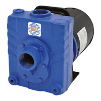 IPT Cast Iron Self-Priming Centrifugal Water Pump — 6000 GPH, 1.5 HP, 1 1/2in., Model# 2822-IPT-95