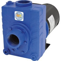 IPT Cast Iron Self-Priming Centrifugal Water Pump — 6480 GPH, 1.5 HP, 2in., Model# 2762-IPT-95