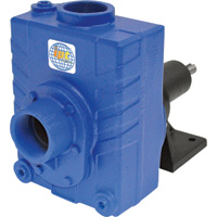 IPT Cast Iron Self-Priming Centrifugal Pedestal Water Pump — 7200 GPH, 3 HP, 2in., Model# 2760-IPT-99