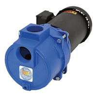IPT Cast Iron Self-Priming Centrifugal Sewage/Trash Water Pump — 2in. Ports, Model# 316AIPT95
