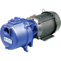 IPT Cast Iron Self-Priming Sprinkler Booster Water Pump — 7200 GPH, 5 HP, 2in. Ports, Model# 3655-IPT-95