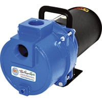 IPT Cast Iron Self-Priming Sprinkler Booster Water Pump — 3480 GPH, 1 HP, 1 1/2in. Ports, Model# 3791-IPT-95