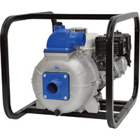 IPT Self-Priming Centrifugal High-Pressure Water Pump — 7800 GPH, 108 PSI, 6.5 HP, 2in. Ports, 208cc Briggs & Stratton Intek Engine, Model# 2P5XAR