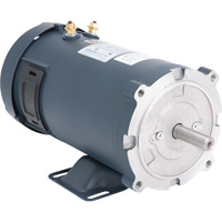 LEESON 12 Volt DC Motor — 3/4 HP, 1750 RPM, 58 Amps, Model# 108048