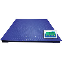 Adam Equipment PT Platform Scale with AE402 Indicator — 4ft. x 4ft., 5000-Lb. Capacity, Model# PT312-AE402