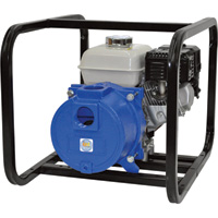 IPT Cast Iron Self-Priming Semi-Trash Water Pump — 2in. Ports, 9000 GPH, 3/8in. Solids Capacity, 160cc Honda Engine, Model# 2GS5QCB
