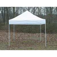 ShelterLogic Pop-Up Outdoor Canopy Tent — 10ft. x 10ft., Truss Top, Straight Leg, White, Model# 22596W