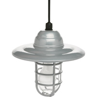Designers Edge Weatherproof Hanging Barn Light — 10in., 120 Volts, 100 Watts, Model# L-1704