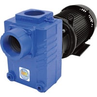 IPT Cast Iron Self-Priming Centrifugal Water Pump — 18,000 GPH, 5 HP, 3in., Model# 2878-IPT-95