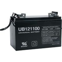 UPG Sealed Lead-Acid Battery — AGM-type, 12V, 110 Amps, Model# 45824
