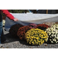DeWitt N'Sulate Ground Cover Fabric — 12ft. x 250ft. Roll, Model# NS12250