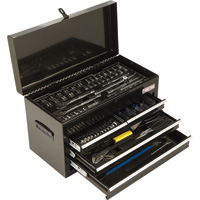 Ironton Portable 263-Pc. Tool Set