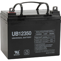 UPG Sealed Lead-Acid Battery — AGM-type, 12V, 35 Amps, Model# 46042