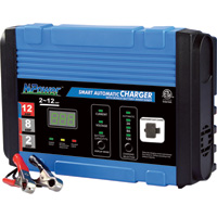 NPower Automatic Battery Charger/Maintainer — 12 Volt, 2/8/12 Amp