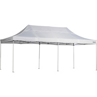 Strongway Commercial-Grade Canopy — 10ft. x 20ft., Straight Leg, White