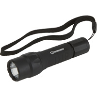 Strongway Compact Aluminum LED Flashlight — 150 Lumens, IPX-7 Rated, Model# AT0TC1B002