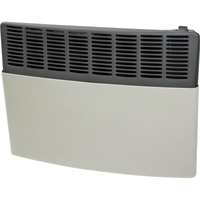 Ashley Hearth Products Direct Vent Wall Heater — 17,000 BTU, Natural Gas, Model# AGDV20N