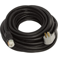 FREE SHIPPING — Generac Generator Cord — 50 Amps, 125/250 Volts, 100ft., Model# 6392