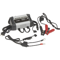 Strongway 3 Amp Smart Battery Charger — Dual 6 Volt/12 Volt