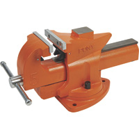 Pony Quick-Release Bench Vise — 5in. Jaw Width, Model# 30105P