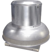 Canarm Direct Drive Downblast Spun Aluminum Exhauster — 12in., 1/4 HP, Model# ALX-120-DD033V