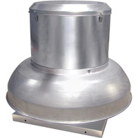 Canarm Direct Drive Downblast Spun Aluminum Exhauster — 15in., 3/4 HP, Model# ALX150-DD075S