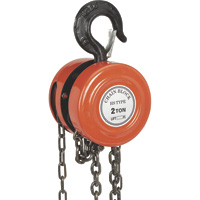 Tool Mart Manual Chain Hoist with 2 Swivel Hooks — 2-Ton Capacity, 5ft. Lift