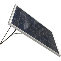 Nature Power Solar Panel with Stand and Charge Controller — 100 Watts, Model# 50102S