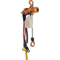 Vestil Air Chain Hoist — 250-Lb. Capacity, Model# ACH-25
