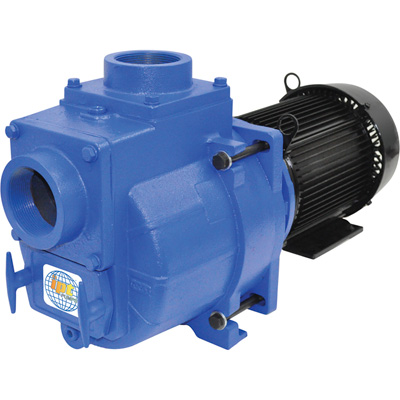 IPT Cast Iron Self-Priming Centrifugal Sewage/Trash Water Pump — 3in. Ports, Model# 394AIPT95